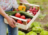 Agriturismo.com e AIAB uniti nel segno del biologico