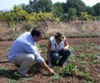 I giovani agricoltori Cia di Pavia chiedono più attenzione e misure incisive. Incontro a Mortara