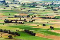 Approvato il nuovo piano assicurativo agricolo 2013, opportunità importanti per l'agricoltura italiana