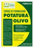 Agricoltura: corso rapido per imparare a potare gli olivi, aperte le iscrizioni