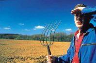Scendono sotto la soglia di 800 mila le imprese agricole italiane