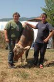 Piana - Garfagnana - Versilia. Agricoltura Giovani: portiamo Twitter nei campi