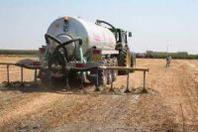 Nitrati, Agrinsieme: subito risposte alle richieste delle imprese agricole
