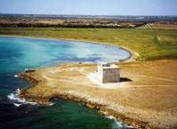 Torre Guaceto: pronta la denuncia di reato ambientale