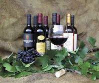 Il vino biglietto da visita dell'export veneto: 31 per cento del totale Italia