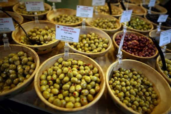 Ulivo: le prime coltivazioni in Medio Oriente 8.000 anni fa - BioNotizie.com