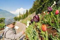 Emozioni fiorite ai Giardini di Sissi a Merano