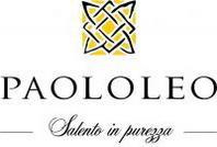 Il Salice Salentino Paololeo Riserva 2008 recensito dalla rivista americana Wine Enthusiast
