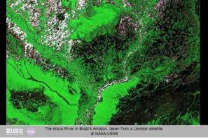 satellite NASA monitoraggio foreste