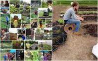 Agricoltura italiana: il motore della ripresa è young