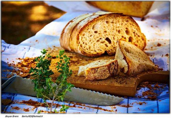 Pane, composizione degli alimenti