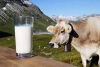 Ue: Bilancio; Marini (Coldiretti), veto per evitare Quote Latte Bis