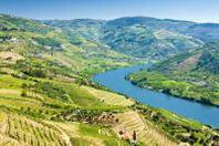 Opodo propone le destinazioni più affascinati per degustare i migliori vini del mondo