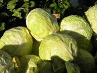 Inflazione: sui prezzi dei prodotti alimentari pesa il maltempo