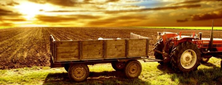 agricolutura