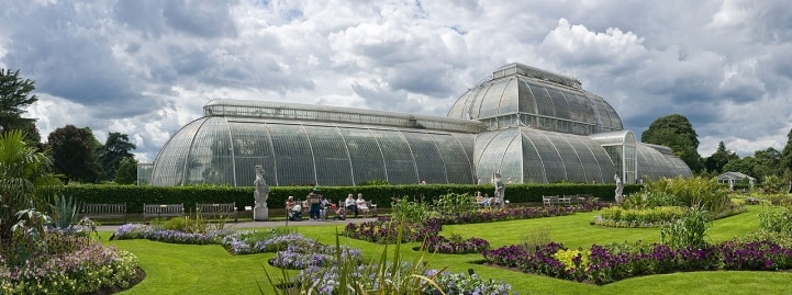I Giardini Botanici della Casa Reale inglese... in un kit tutto da coltivare!