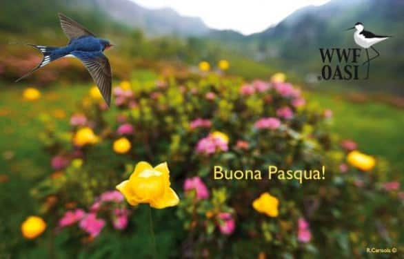 Pasqua e Pasquetta nelle Oasi del WWF per vacanze sostenibili
