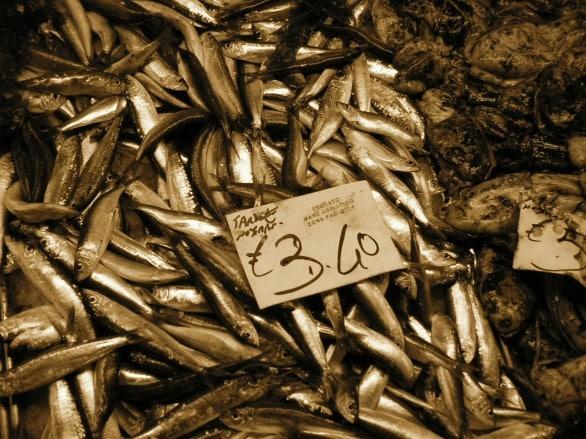 Esaurite le riserve di pesce italiane, da domani solo pesce importato