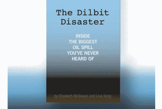 Il Premio Pulitzer a InsideClimate News giornale ambientalista