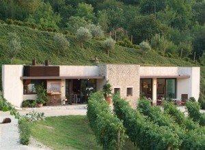 Il vino del mese: Vignasilan 2009 – Contrà Soarda - BioNotizie.com