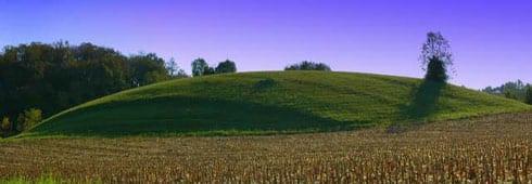 Ossigeno finanziario alle aziende agricole