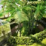 Le pitture biologiche: una scelta green nel rispetto dell'ambiente e della salute