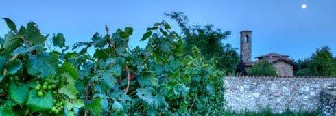 Ca' Foscari in Cultura del Cibo e del Vino