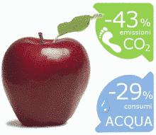 Comunicare la sostenibilità con Carbon/Water Footprint e ISO 20121