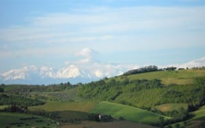 Vini: l'anima artigianale di un pugno di Pecorino