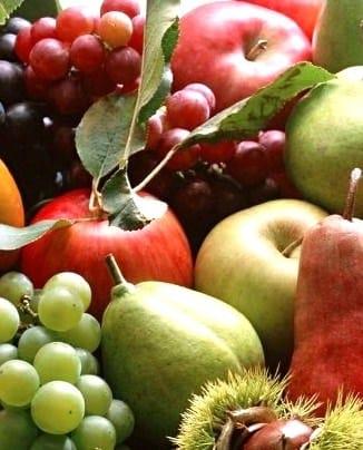 Frutta e Verdura di Stagione : La spesa di Novembre