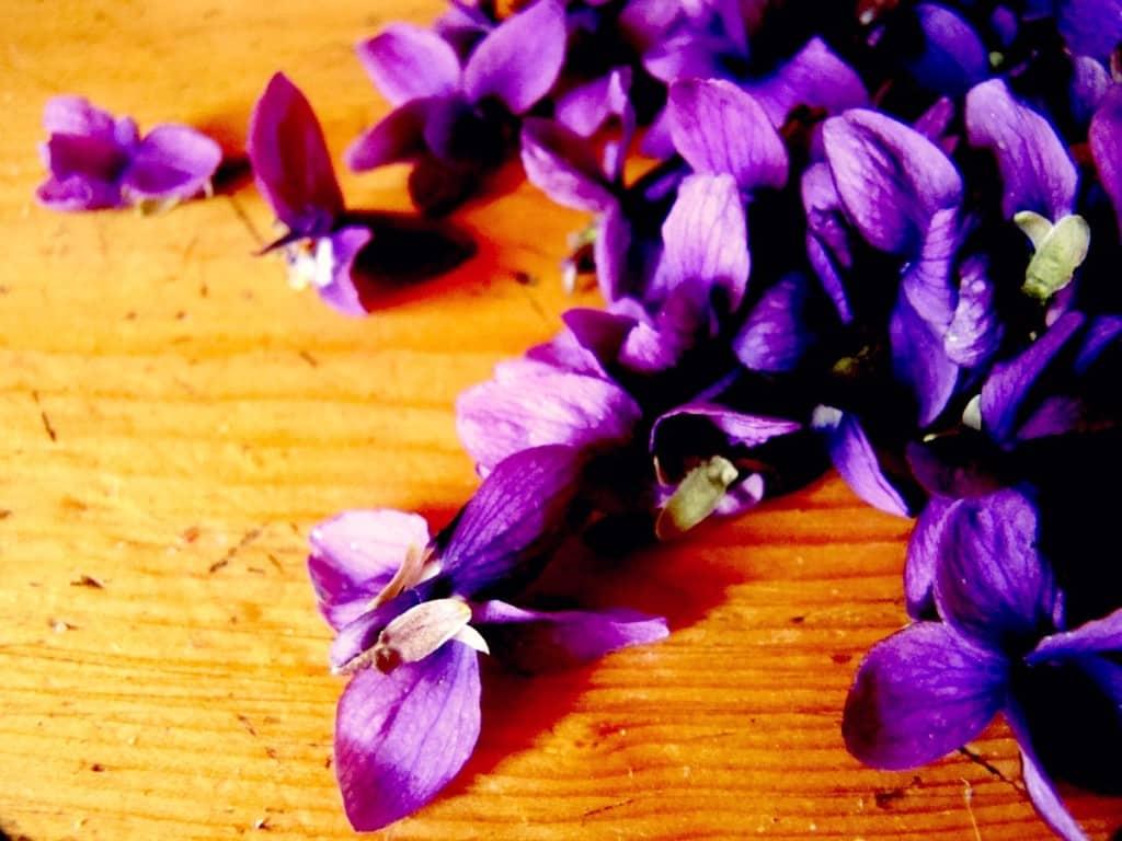 Come Preparare un Oleolito alla Violetta
