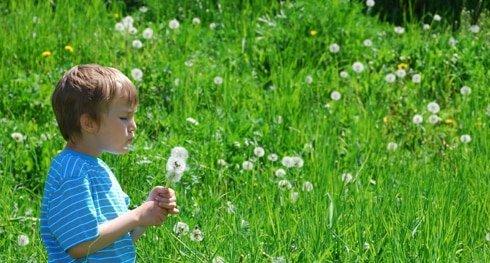 Aria di primavera! Fiere ed eventi in Italia dedicati alla natura, ai fiori e ai giardini
