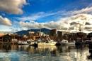 Destinazioni top 2015: Lonely Planet inserisce la Tasmania al quarto posto