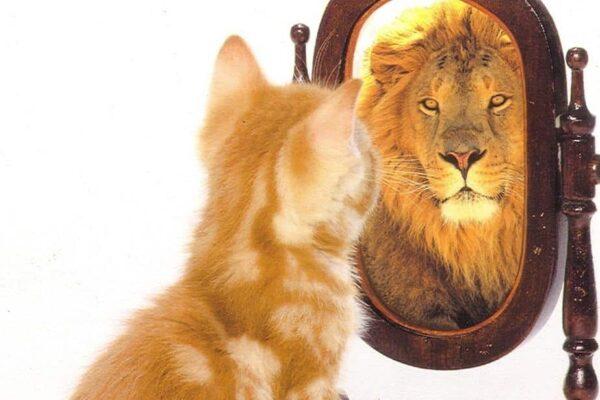 Come risolvere i problemi di autostima con la psicoterapia - BioNotizie.com