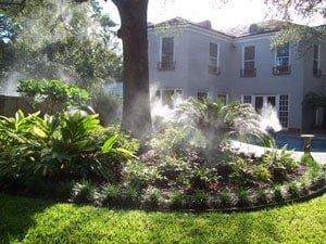 Repellenti naturali contro le zanzare