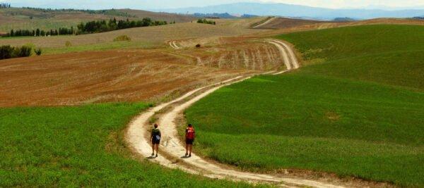 La Via Francigena da vicino – Alcune Informazioni e tappe - BioNotizie.com