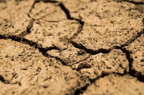 Interventi di consolidamento terreno - BioNotizie.com