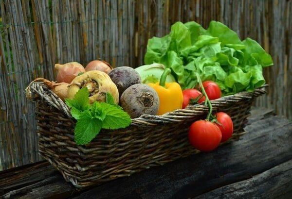 Quando si fa un'integrazione di Vitamina B12 nei mangimi?