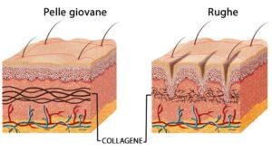 Collagene: la proteina che ringiovanisce il viso