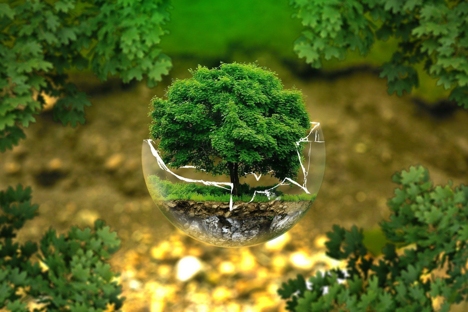 Moda green: i brand più famosi diventano eco-friendly