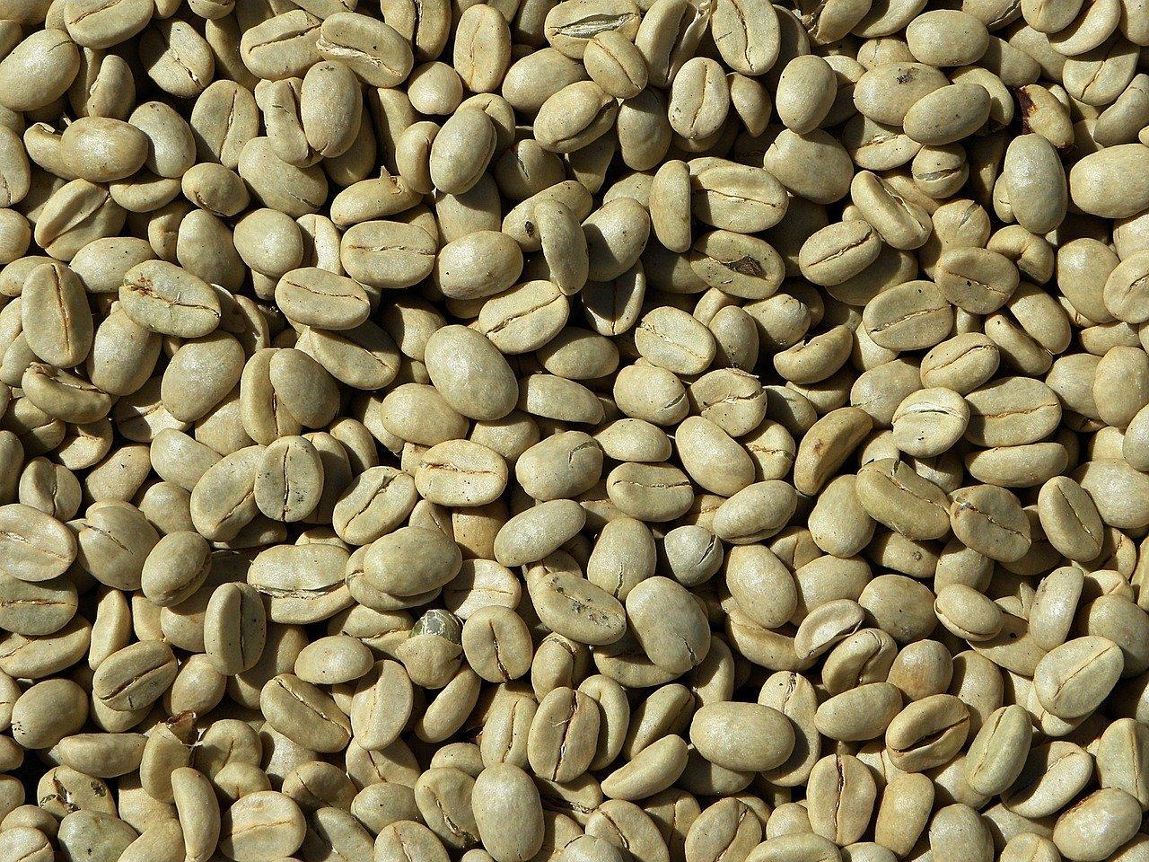 Cibi Scaduti: Quali Alimenti si Possono Mangiare – Mr. Loto